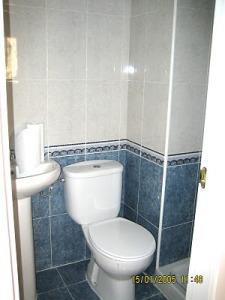Baño con azulejos desactualizados